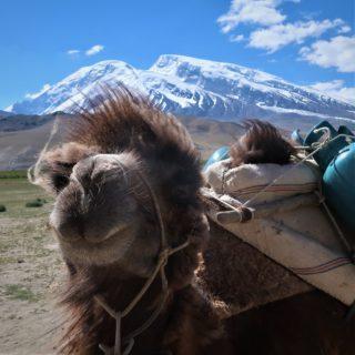 中国新疆ウイグル 崑崙山脈 ムスターグアタ7546m