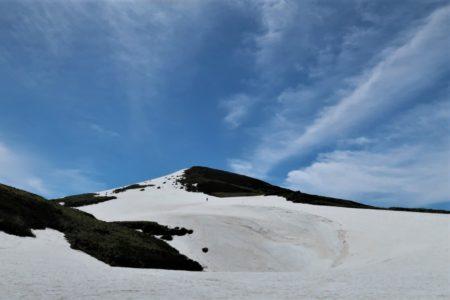 新緑のブナ鳥海山2236m滑り収め